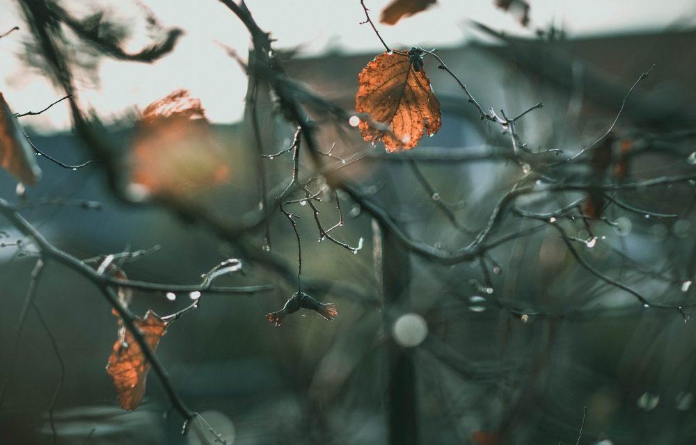 Wintertijd, tijd voor jezelf