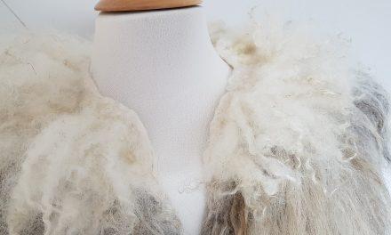Inspiratie: Mooie en duurzame wol uit Nederland